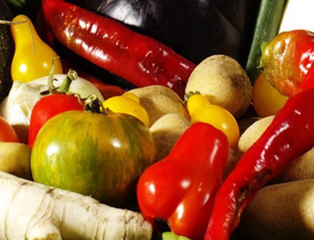 Pflanzliche Hormone in Lebensmitteln – Tabelle